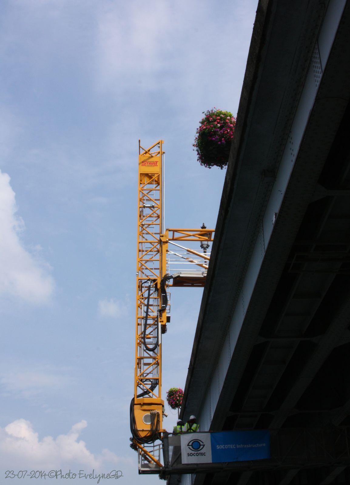Quoi de neuf en Bord de Seine ?