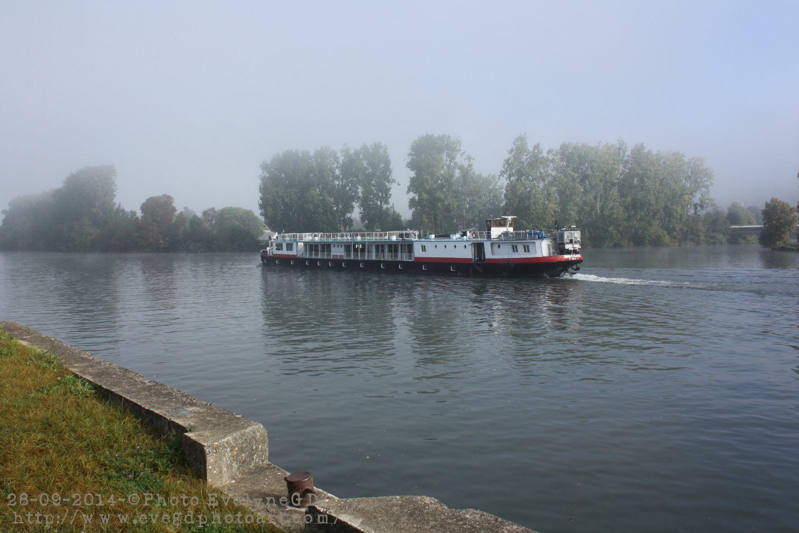 Les Bords de Seine.. sous la brume..