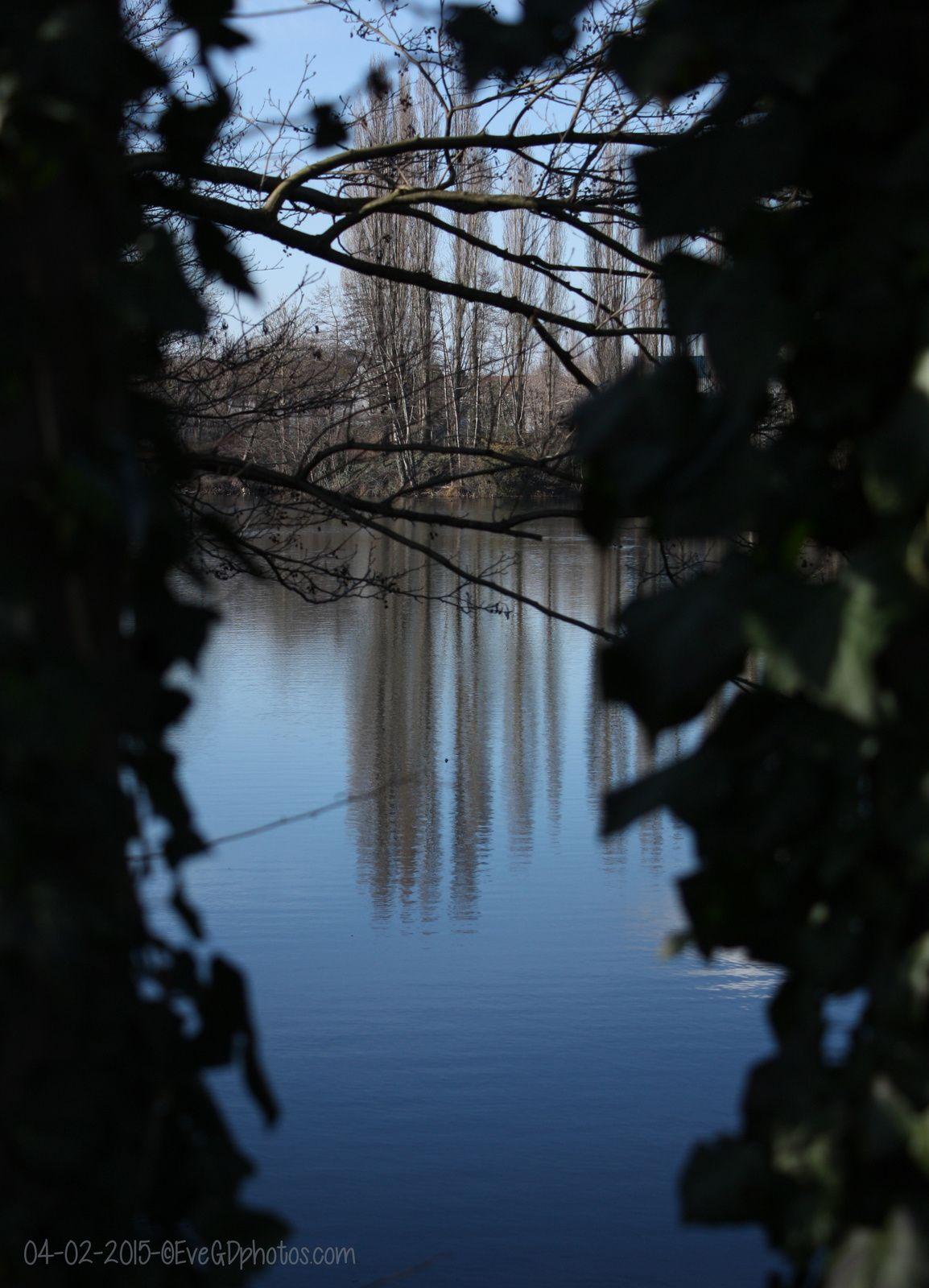 Au Lac de Gassicourt... reflets..