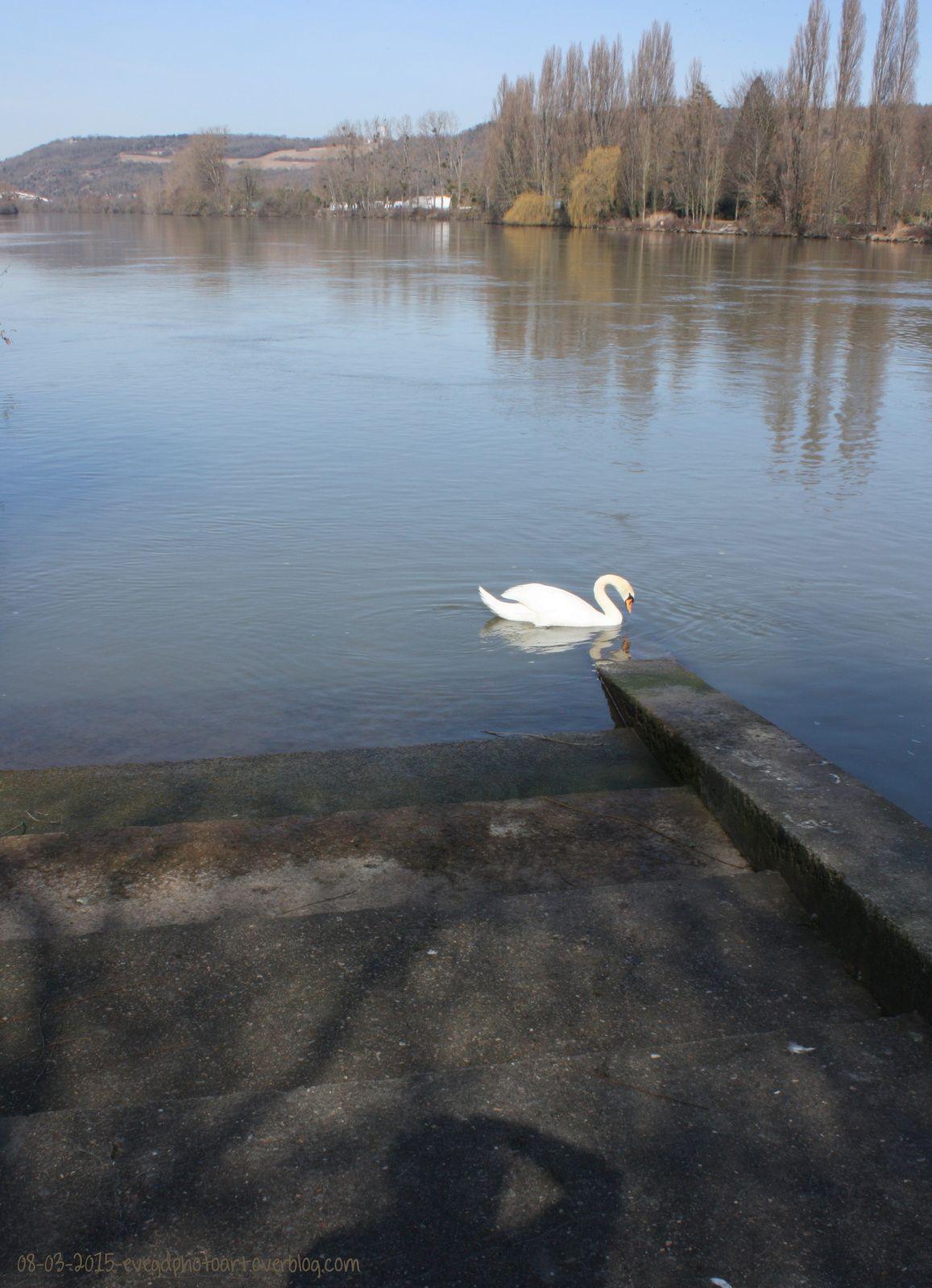 Les Bords de Seine.. Ca sent le printemps !!