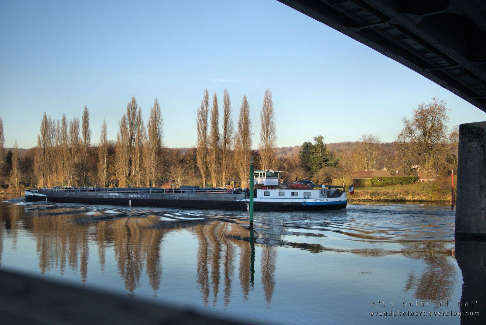 Bords de Seine en novembre.. Les couleurs du Soir