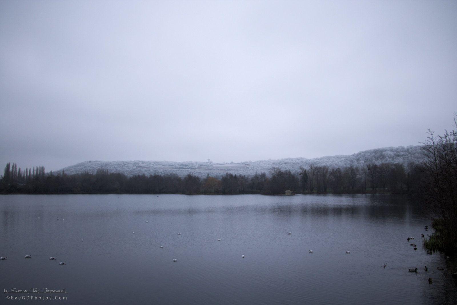 Balade au Lac, un 1er janvier..