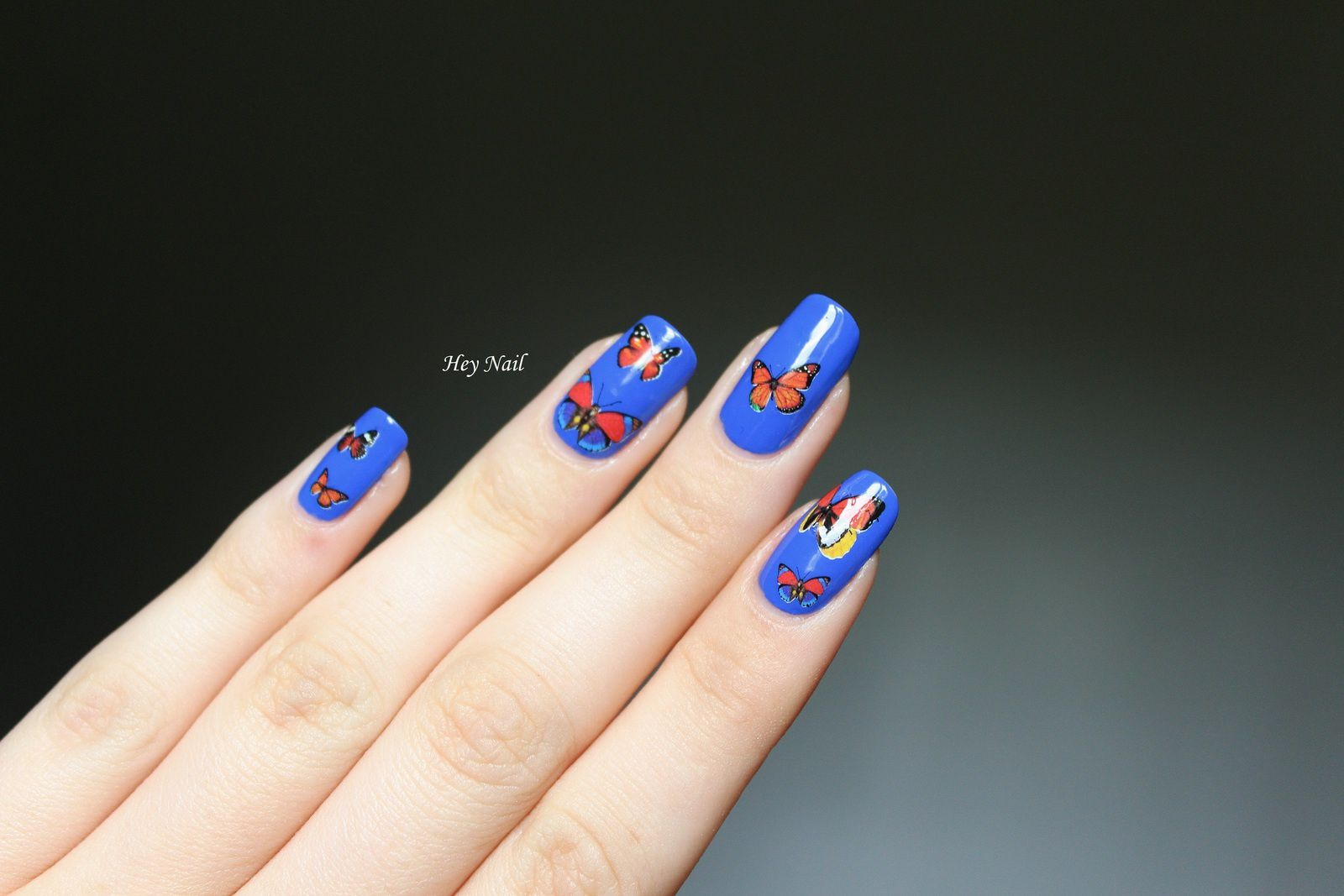 Water Decals Papillons