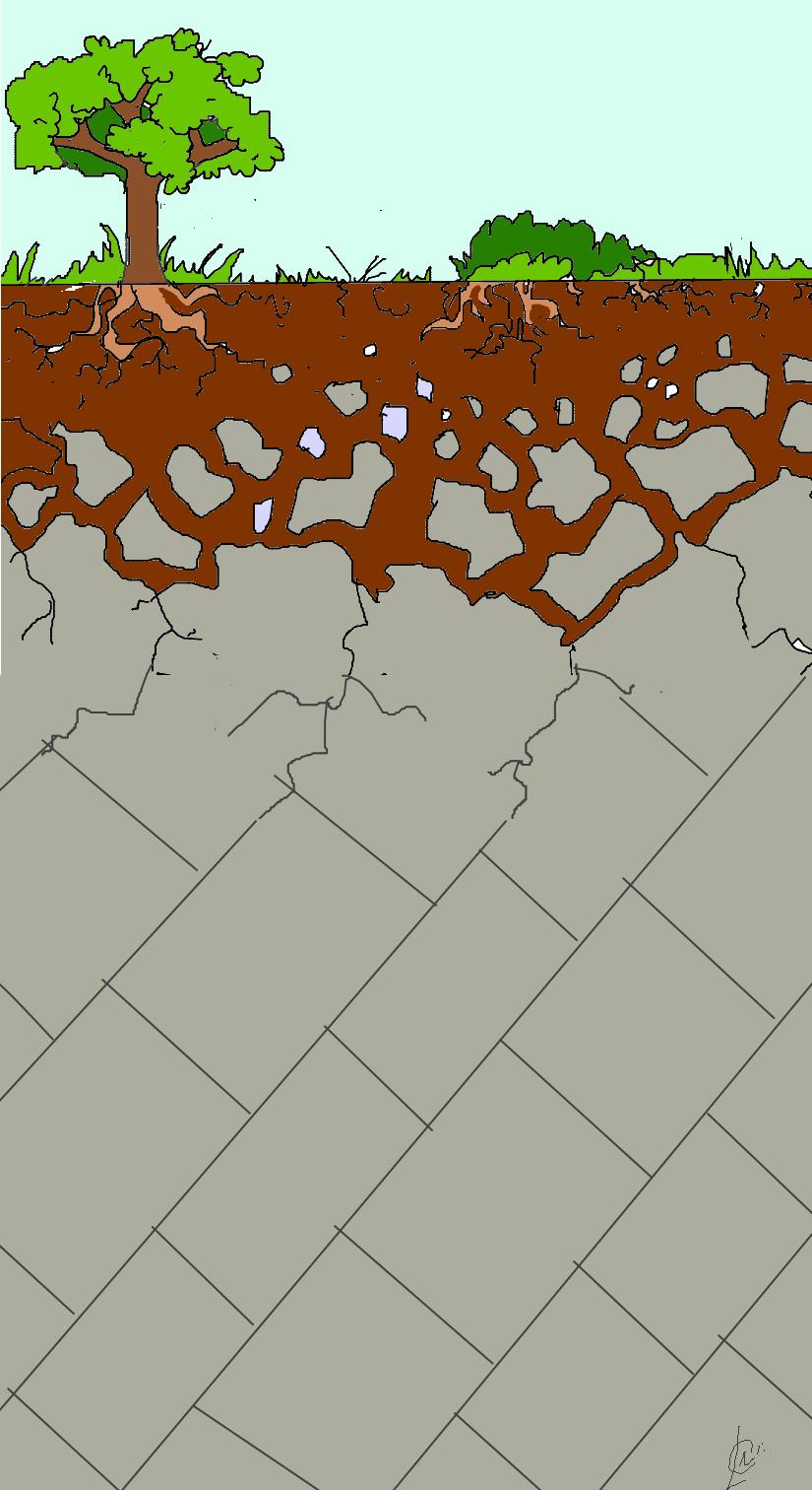 Un peu de géologie... : Le sol