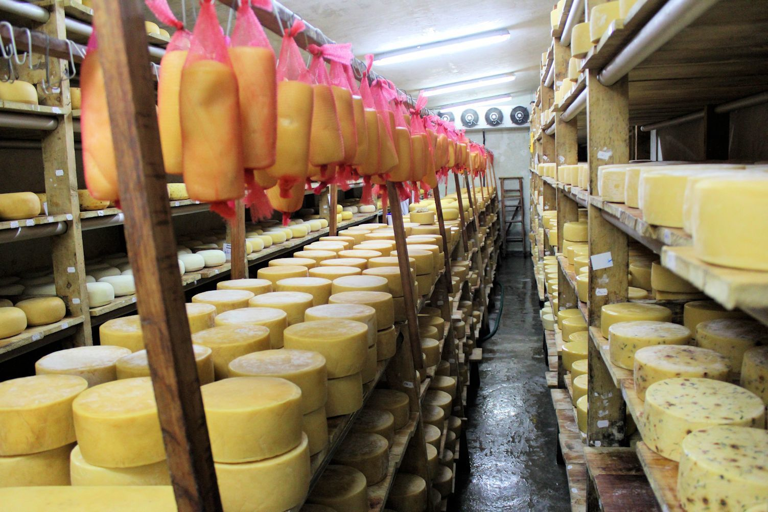 Brown's Cheese Factory &amp&#x3B; Farm