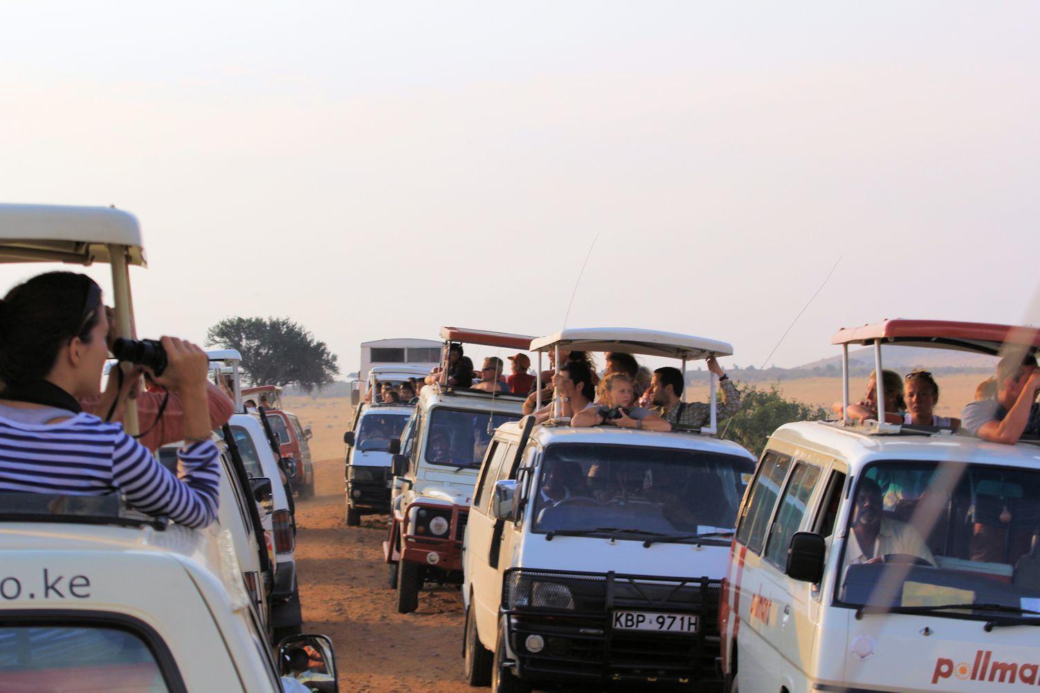 Traffic jams in Maasai Mara National Reserve