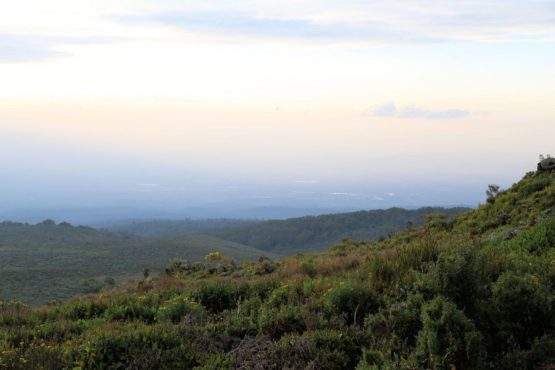 Hiking Mount Kenya. Part 2