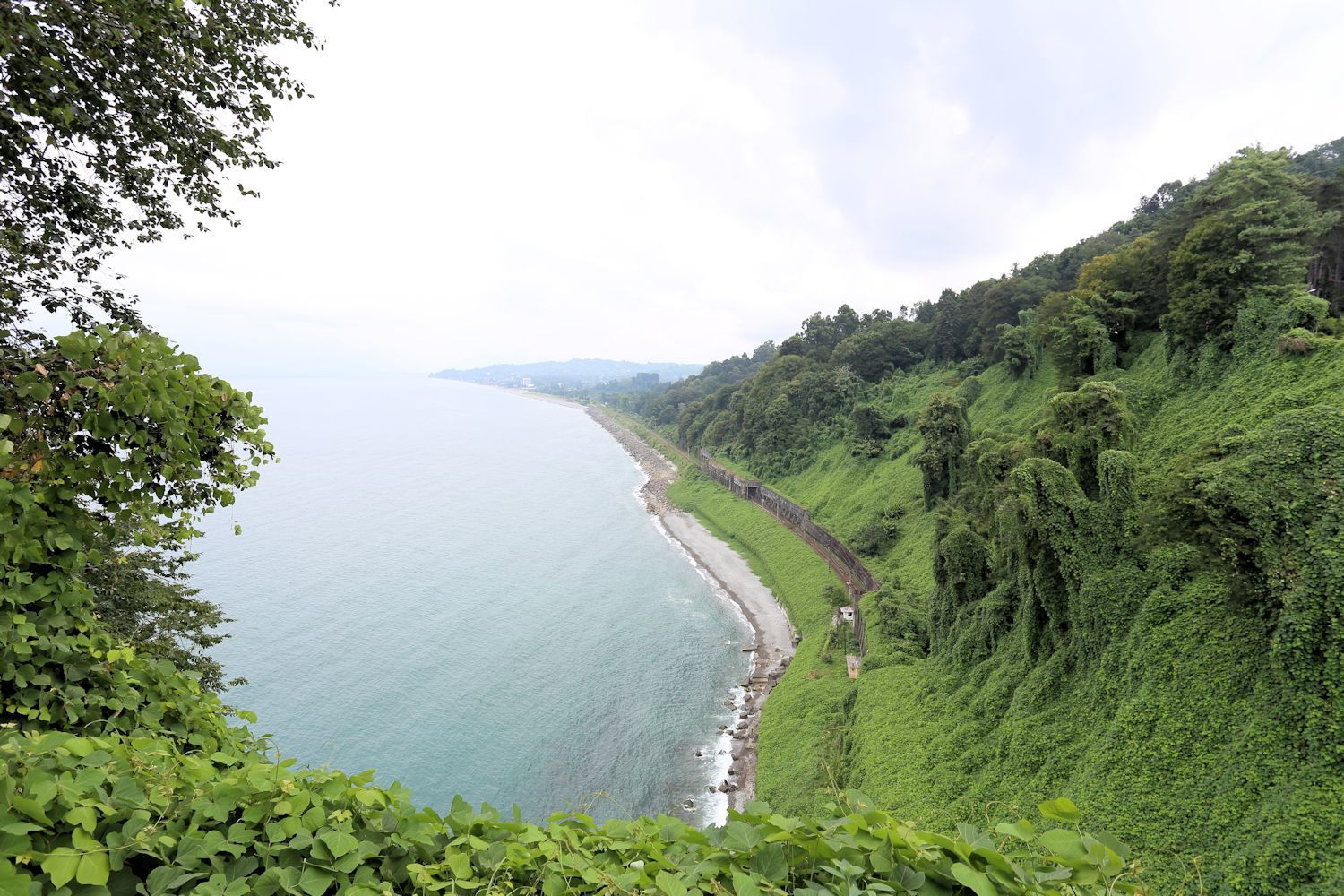Black sea and the railway view from the Batumi Botanical Garden