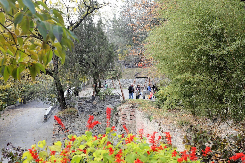 Childrens' play ground in Tbilisi Botanical Garden