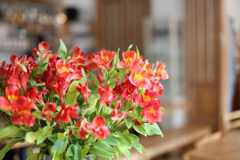 Fresh flowers in O Moda, Moda