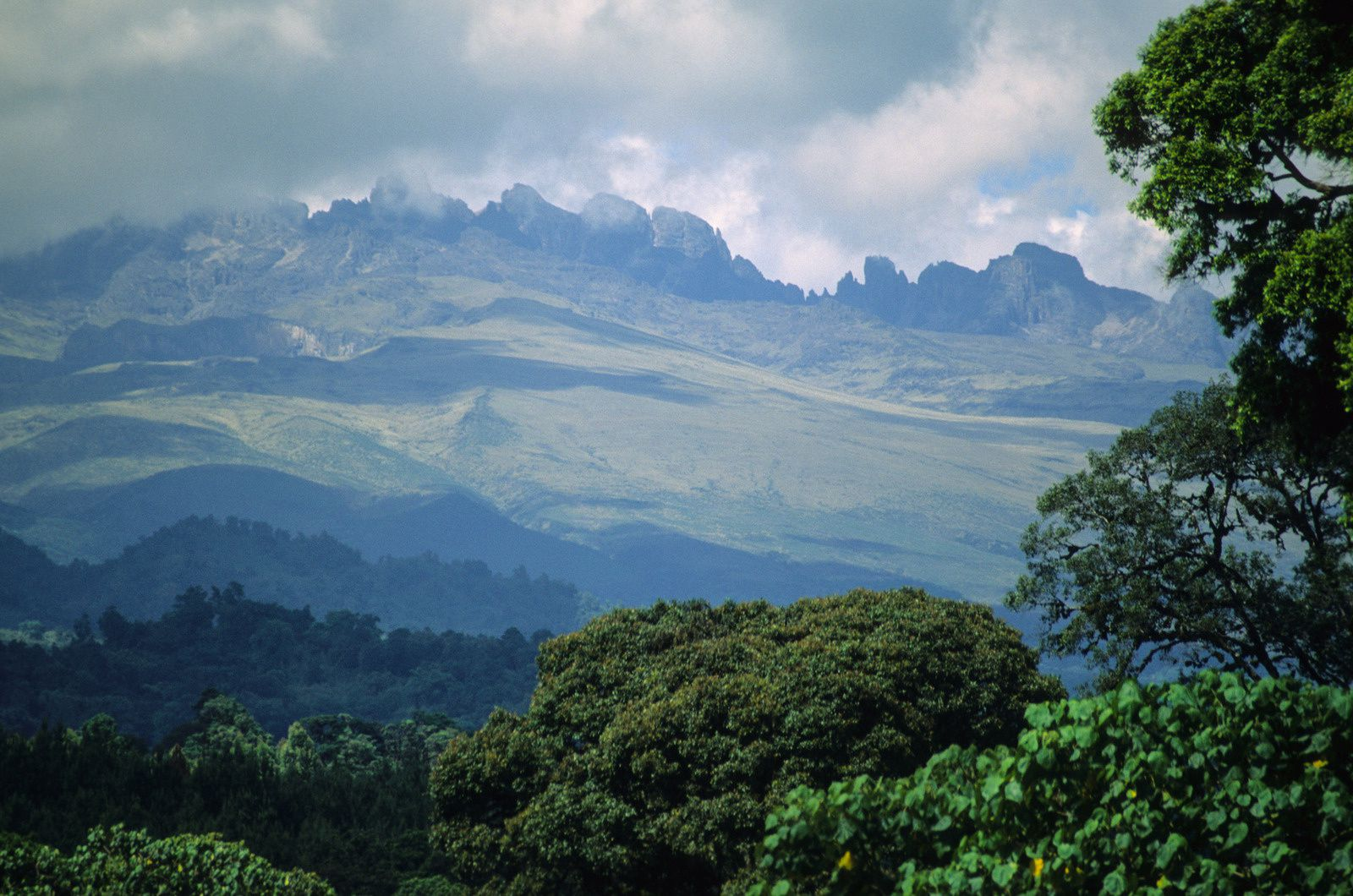 Mount Kenya view