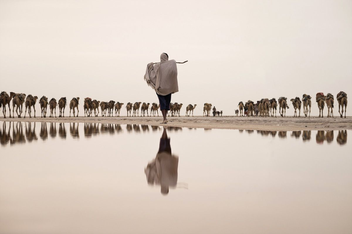 Water Commended Joel Santos (Portugal)  Salt flats, Afar region, Danakil Depression, Ethiopia  Salt miner taking a camel caravan to the mining site.