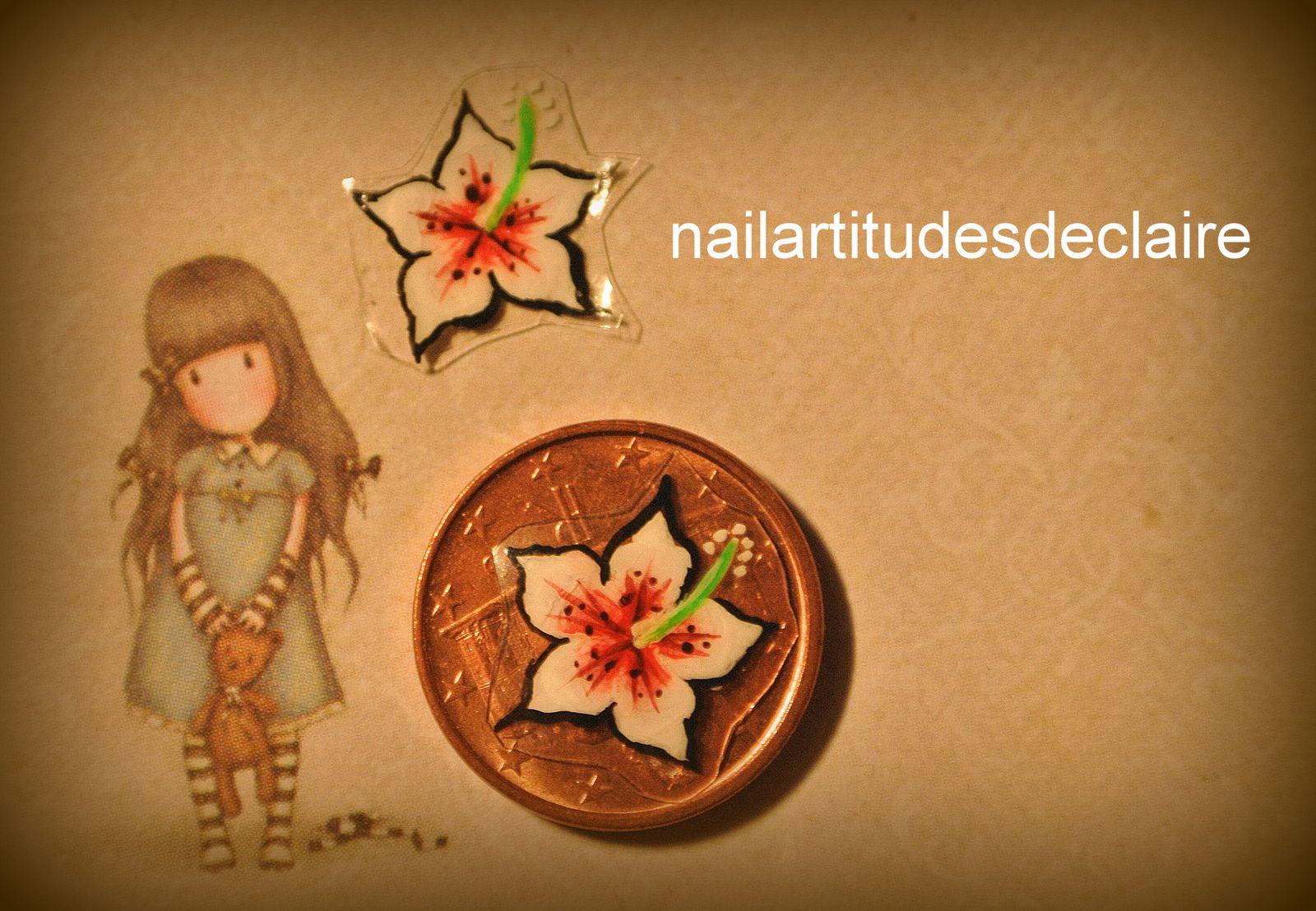Des petits hibiscus, enfin petits...pas si petits que ça vous allez voir ...