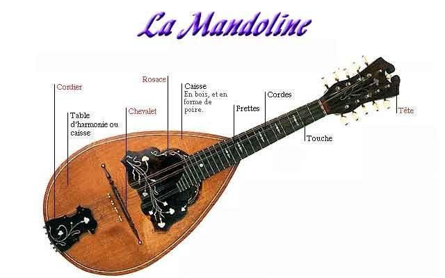Atelier Mandoline avec Karol Korszuk