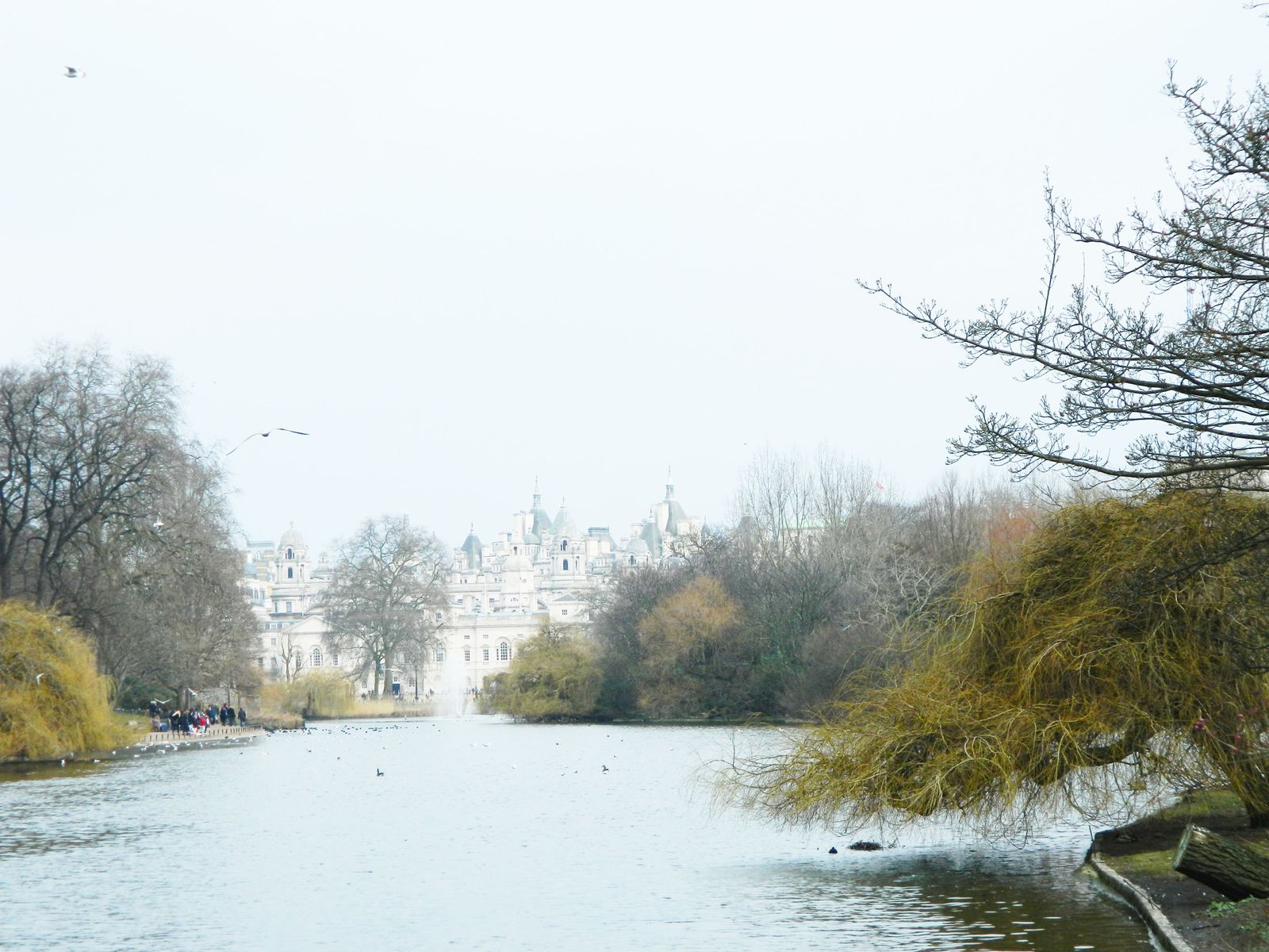 Saint James's Park - Buckingham Palace