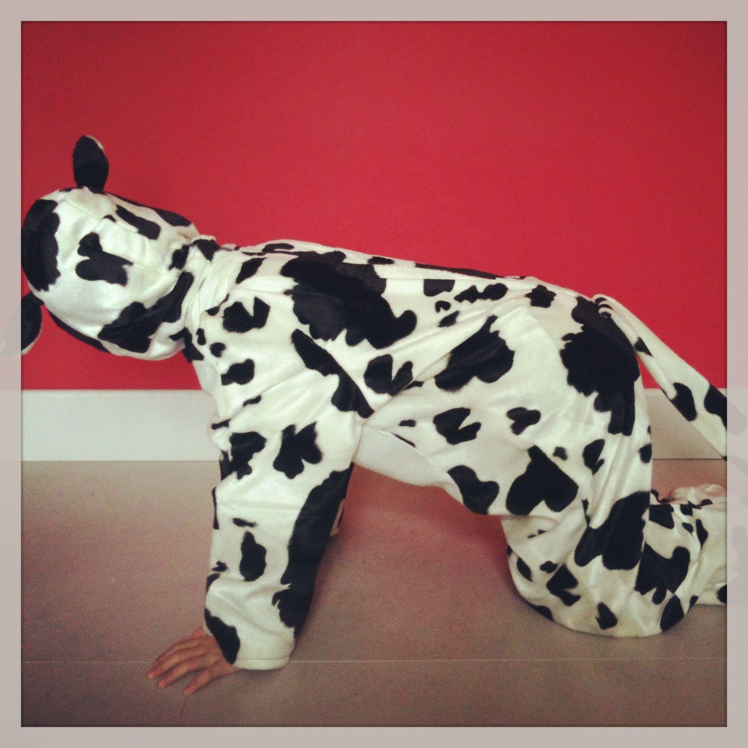 Pour une p'tite vache ...