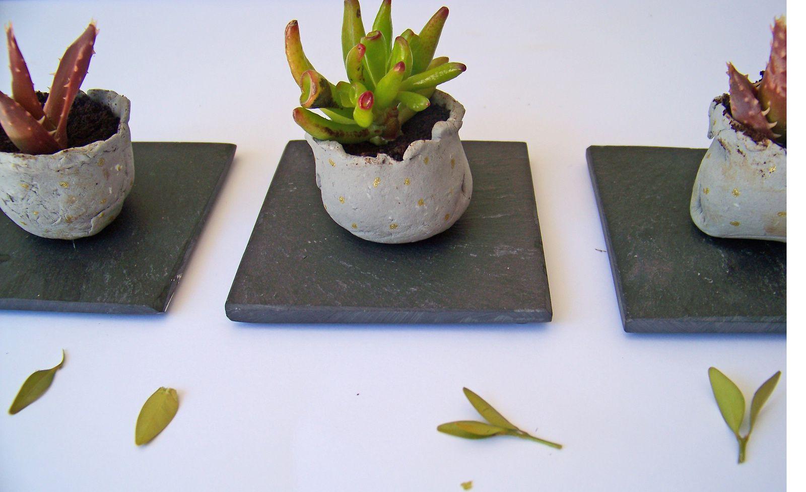 DIY:Pots effet béton pour mini succulentes