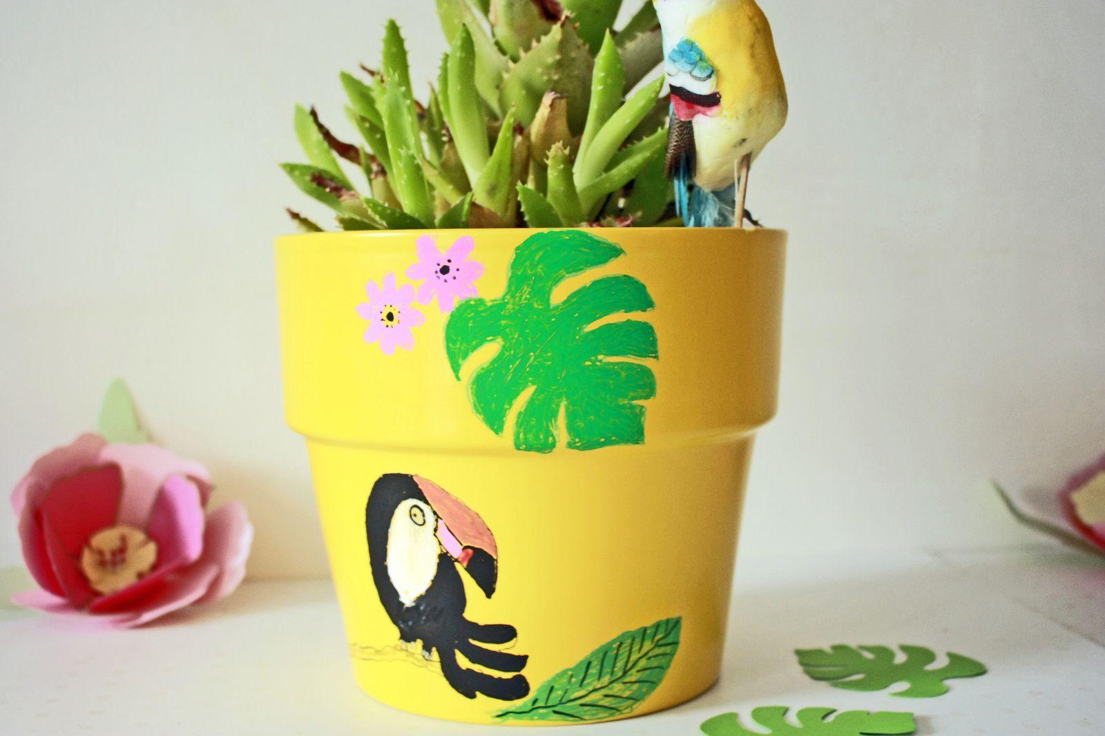 Exotisme et couleurs éclatantes pour cactus tristounet !!!