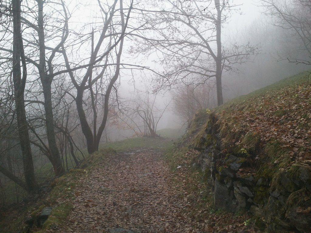 Chemin & brouillard