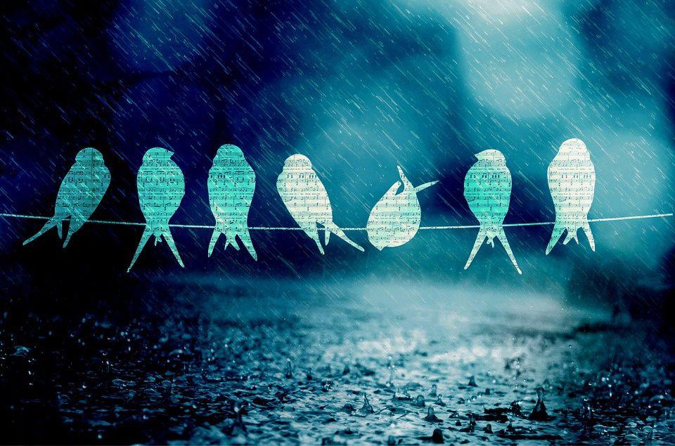 L'odeur de la pluie.
