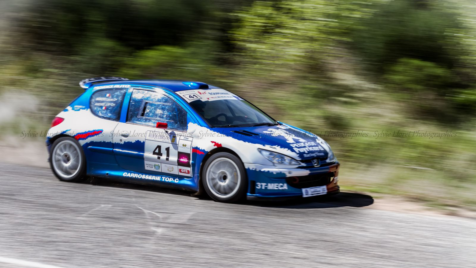 Rally des Roches Brunes 2013
