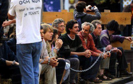 Les faucheurs d'OGM en procès à Colmar : voici ce qu'ils ont dit