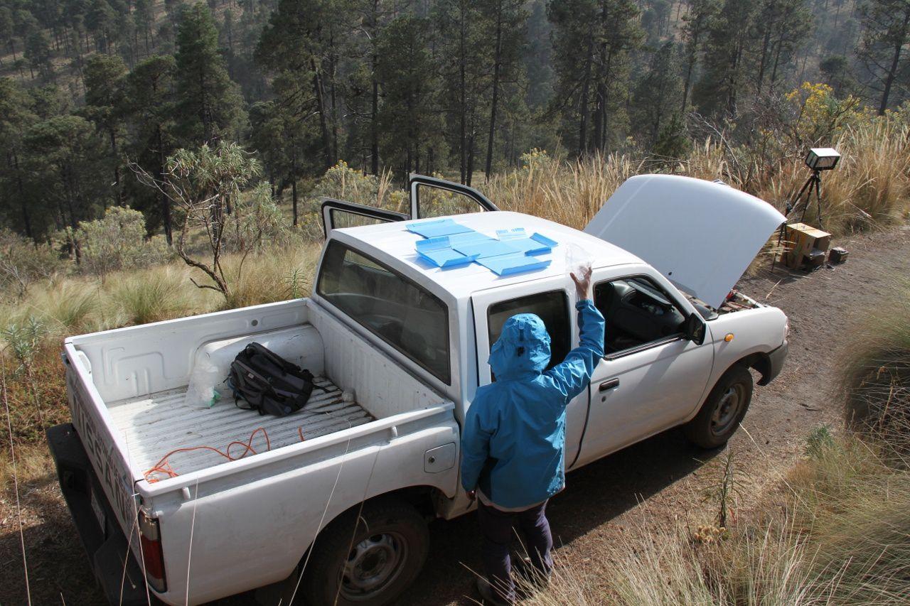 Collectes des cendres sur le toit de la voiture