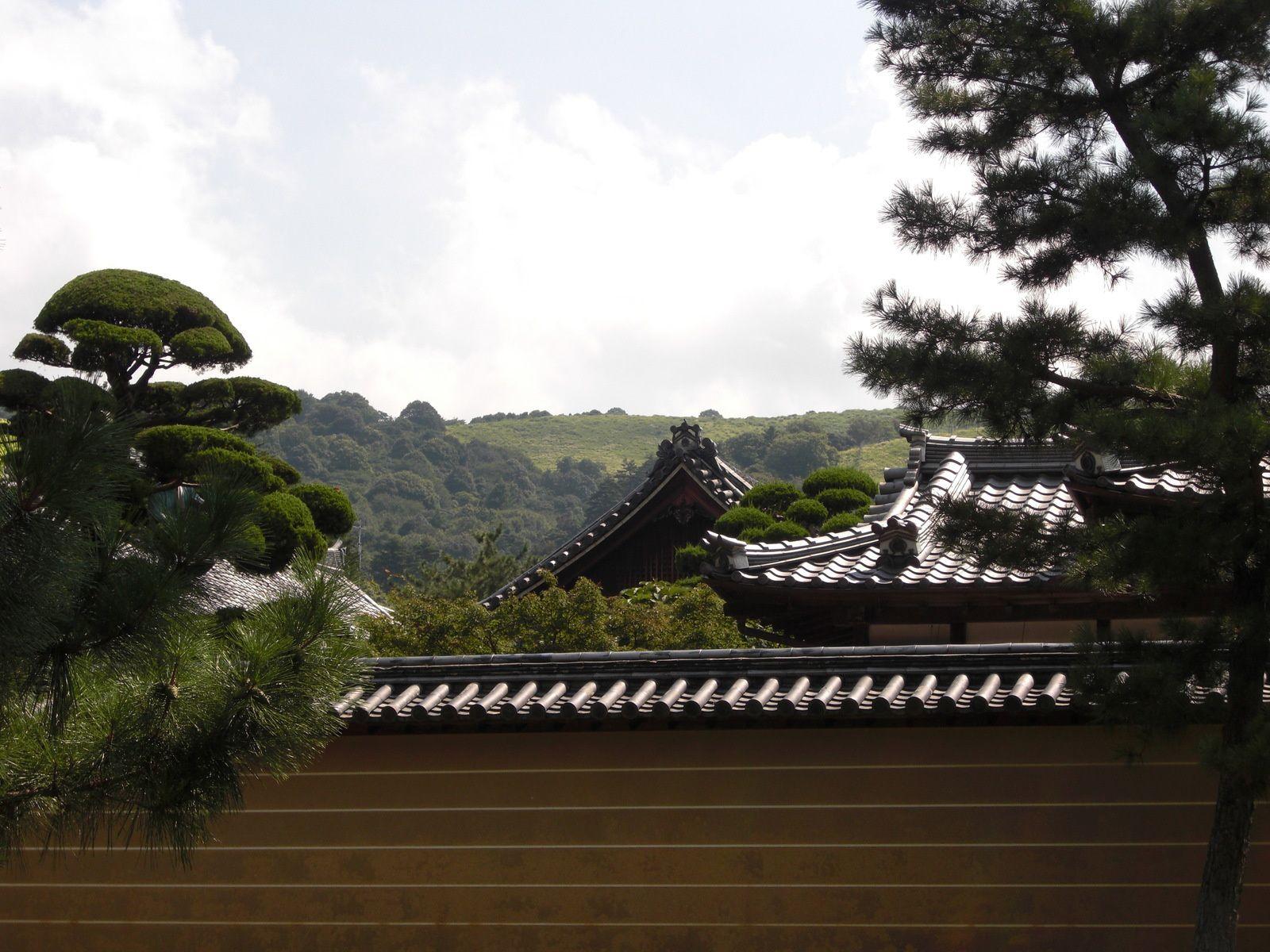 Le plus grand Temple de Nara, avec ses Daims apprivoisés, et le plus grand Bouddha, statue  de Vairocana.