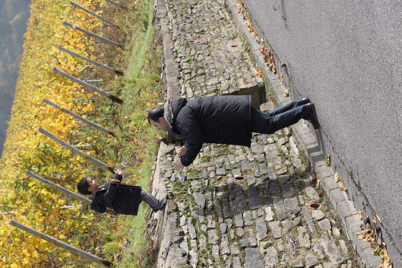 Vignes de Kasel, près de Trêves.
