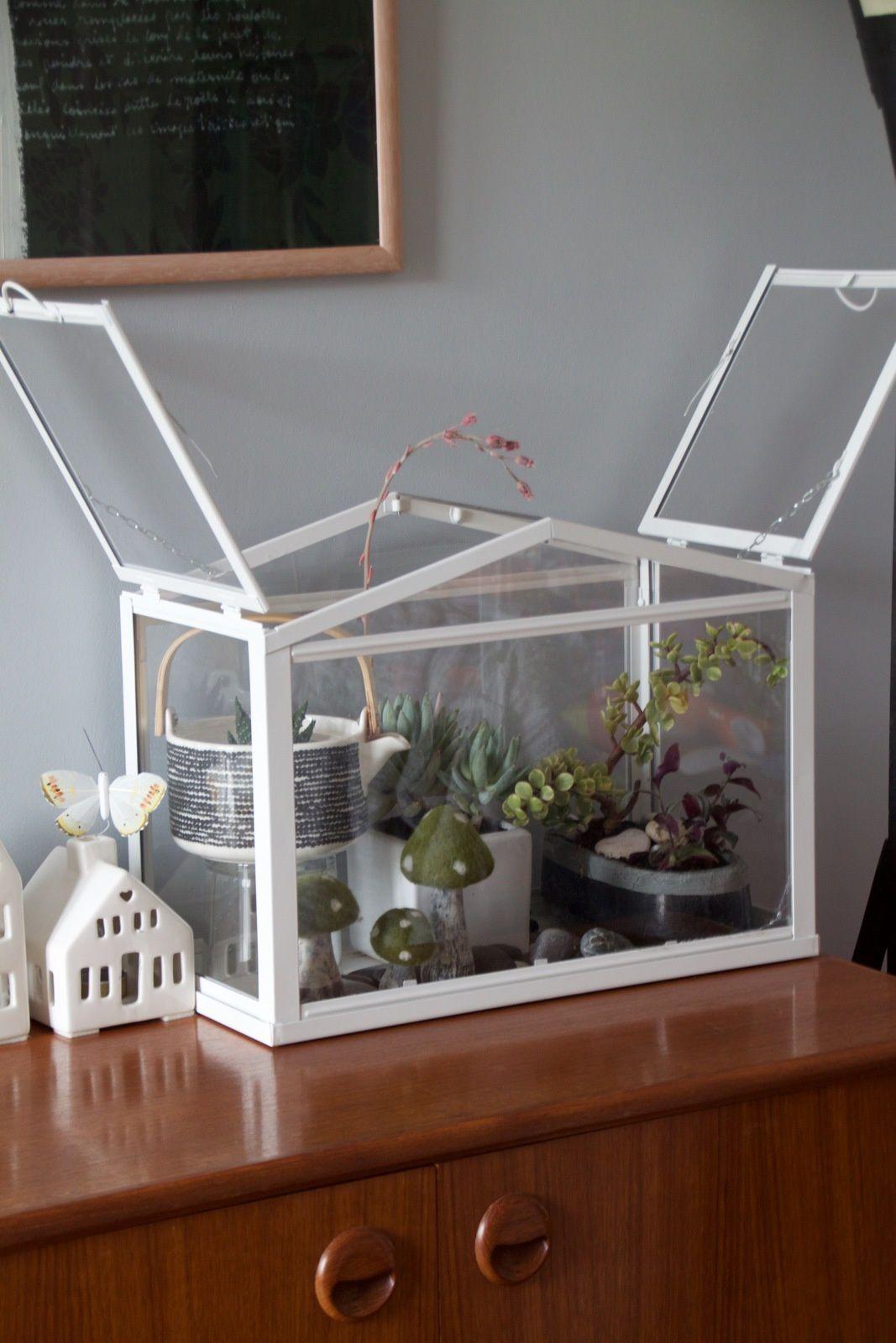 deco idee serre. Black Bedroom Furniture Sets. Home Design Ideas
