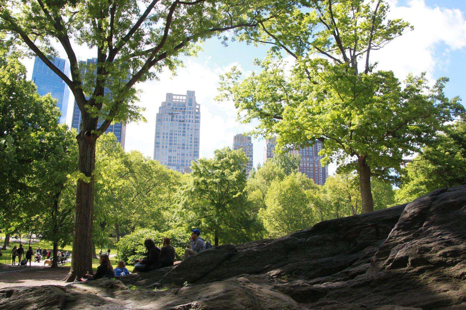 Central Park et le MET