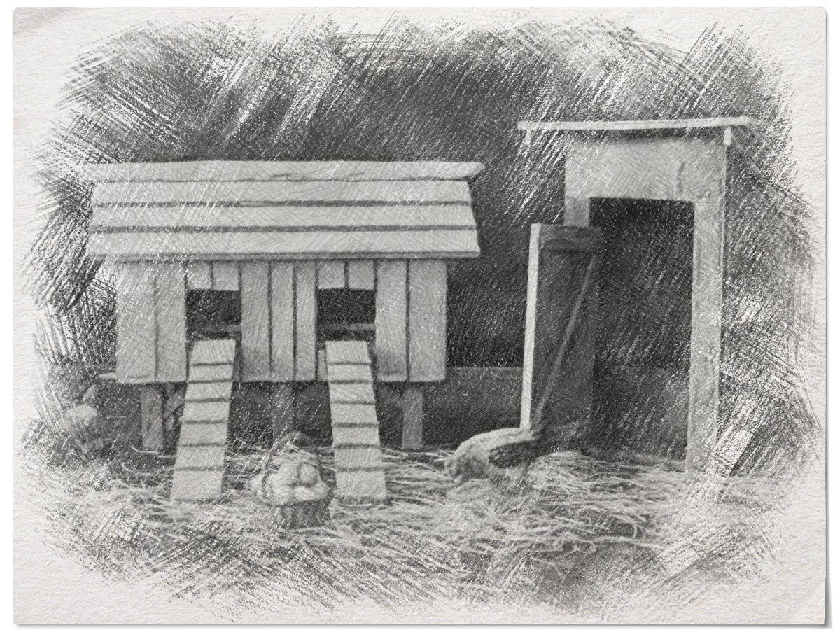 Le poulailler et le petit coin de la petite maison dans la for B b la petit maison