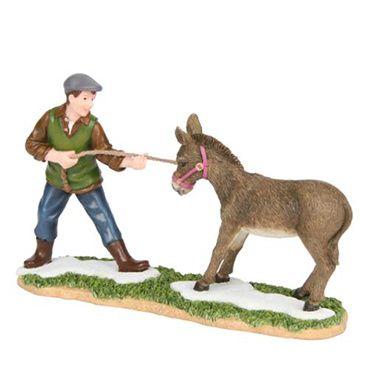 601533 Benjamin with mule