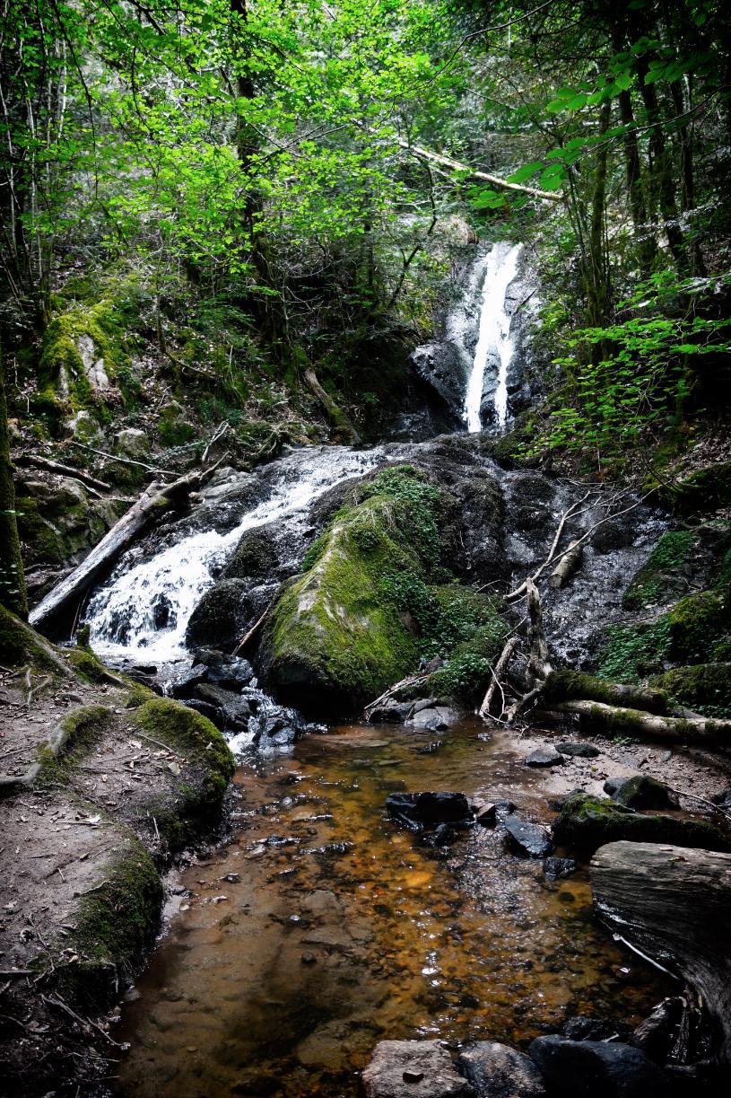 La Montane à Gimel-les-Cascades (19)