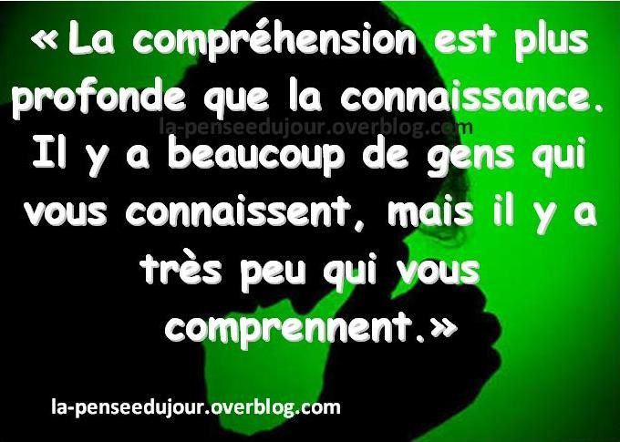 découverte du forum... - Page 3 Ob_765e0e_citation-comprehension-connaissance