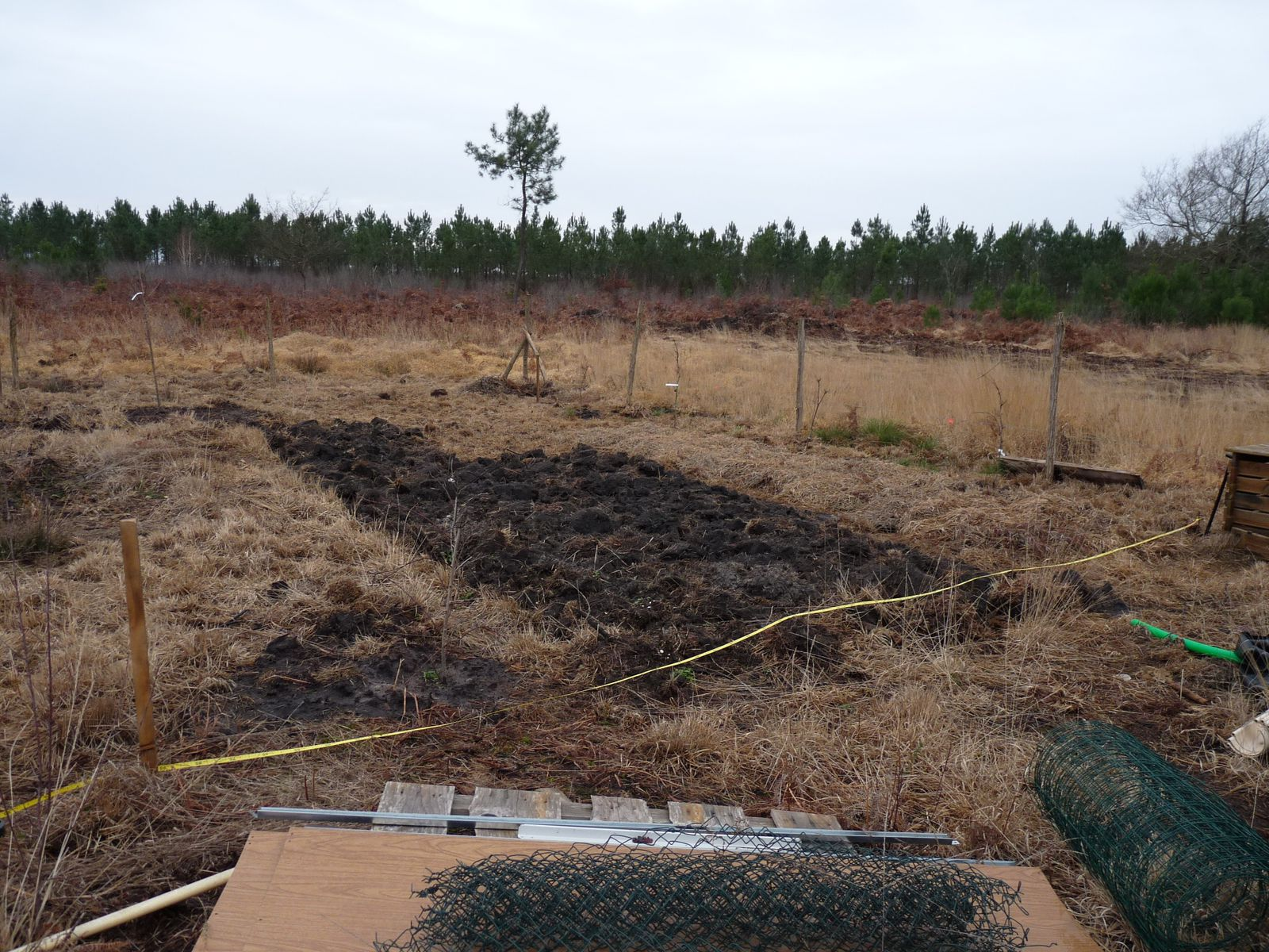 Implantation du potager monjardindansleslandes for Implantation jardin paysager