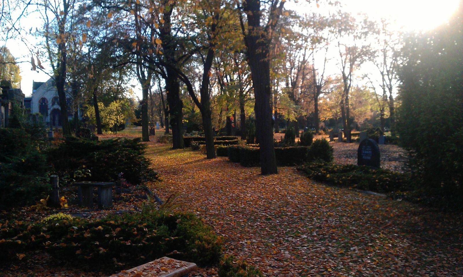 erste Gräber