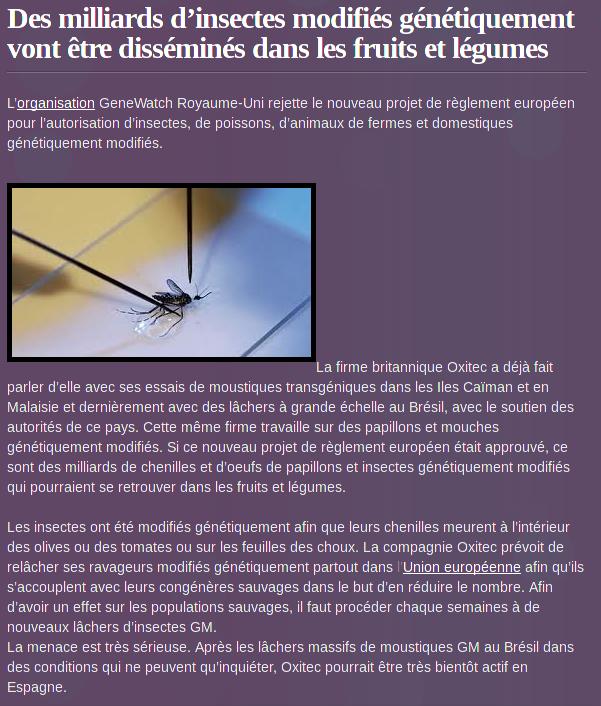 Délirant !!! Des #insectes #transgéniques