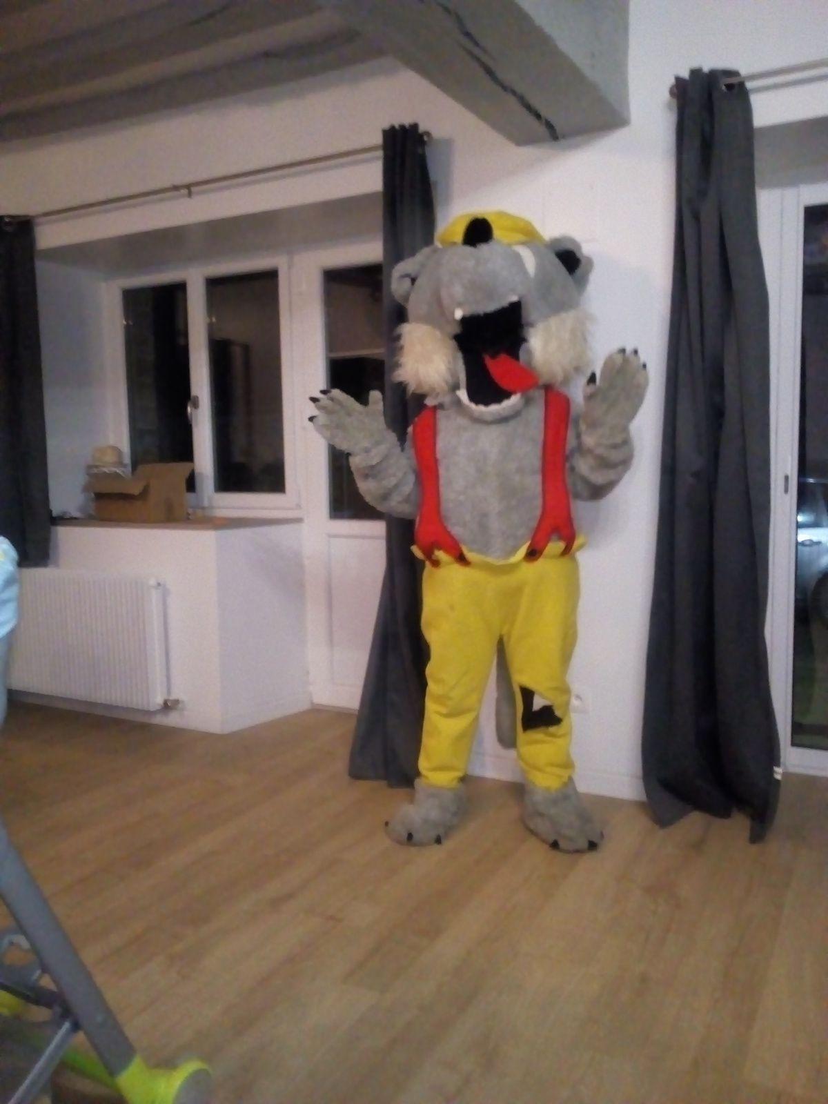 Vive le carnaval et ses mascottes !