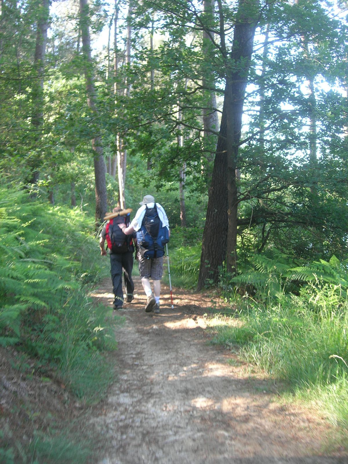 Daniel l'accompagnateur et Christophe dans la forêt proche du lac de Broussau.