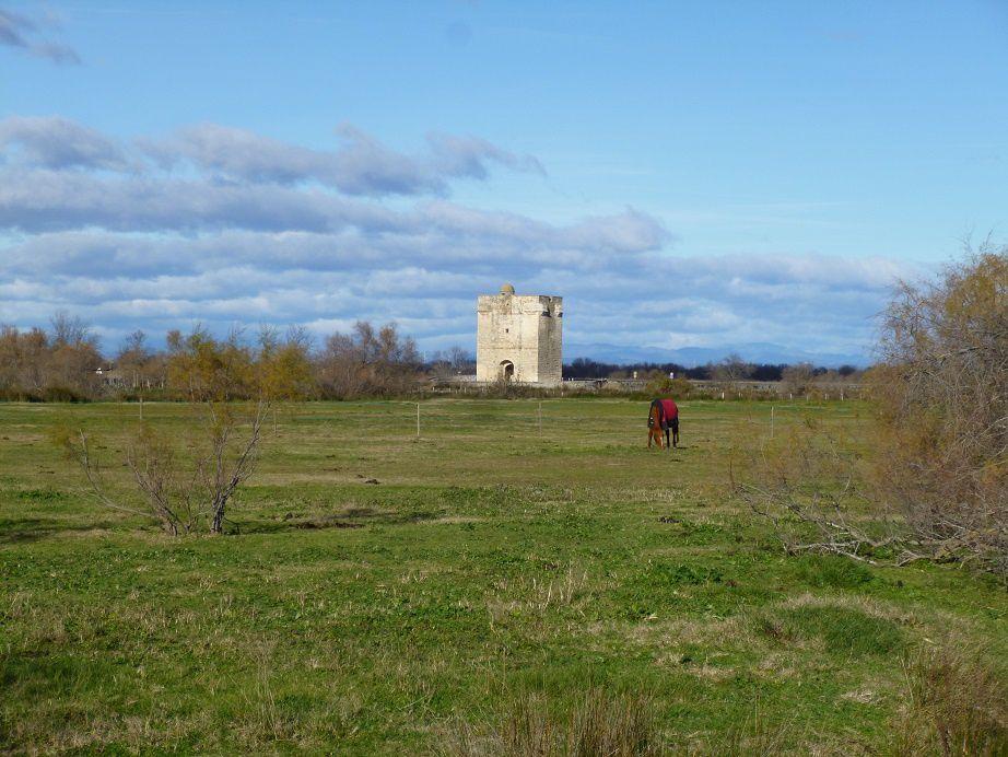 La tour Carbonnière.