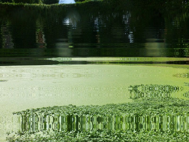 effet d'optique reflets