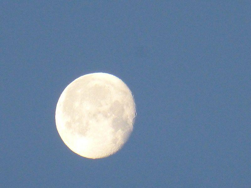 20 décembre, veille de l'hiver, lune du matin dans un ciel clair, vers 9 heures moins le quart (8h42)