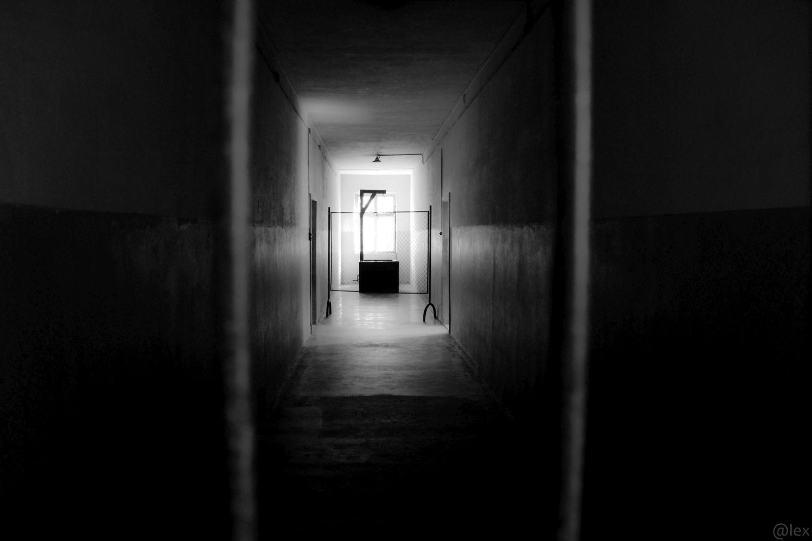 Auschwitz, la mort au bout du couloir