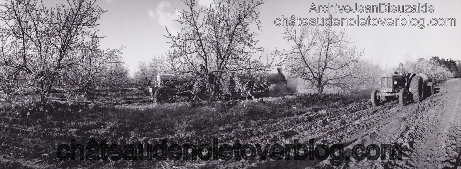 Domaine de Nolet, 1956