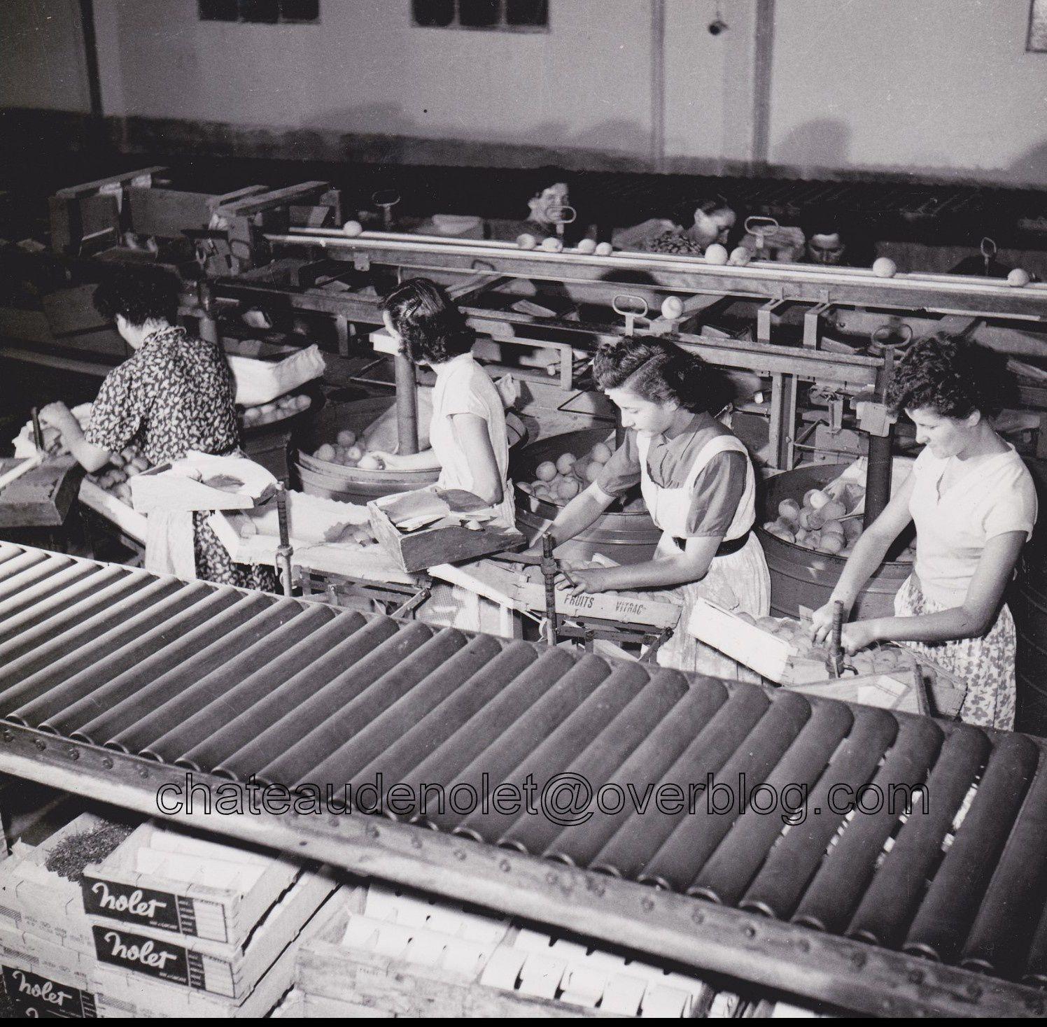 Mon père et son équipe devant la station d'emballage de Nodery et le travail dans l'usine