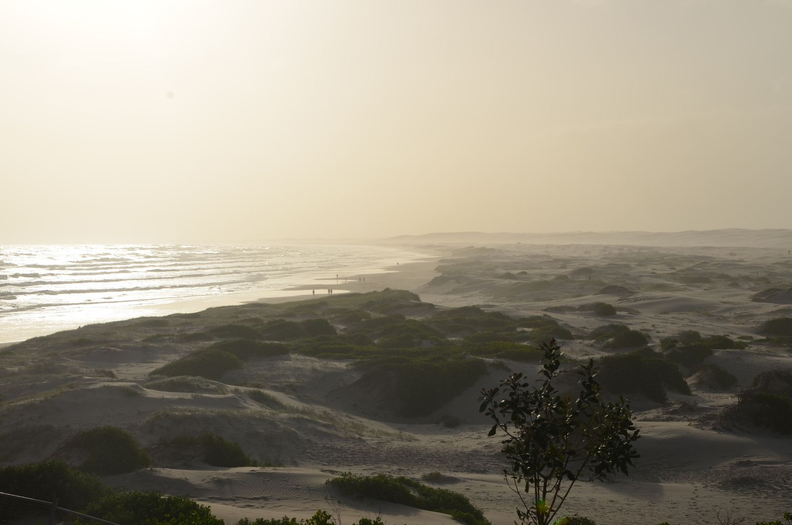 Stockton beach, dune de sable & camping sauvage