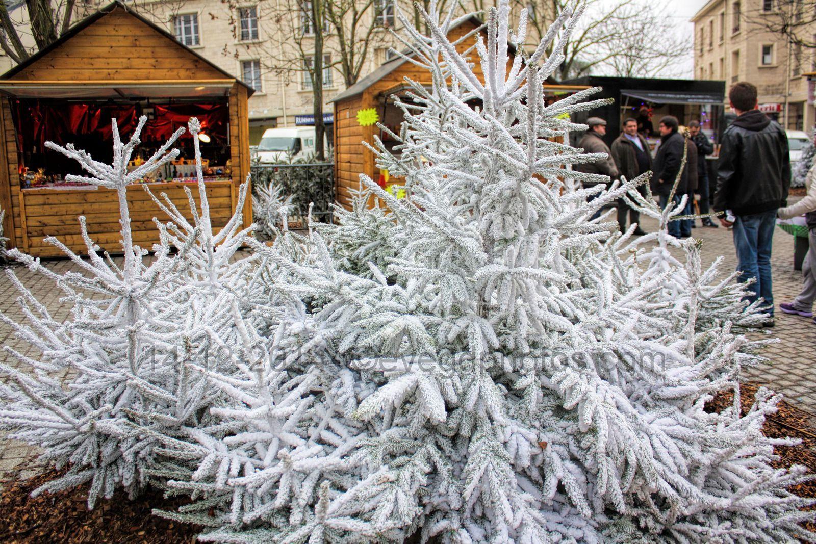 Agenda : Le Marché de Noël à Mantes la Jolie...
