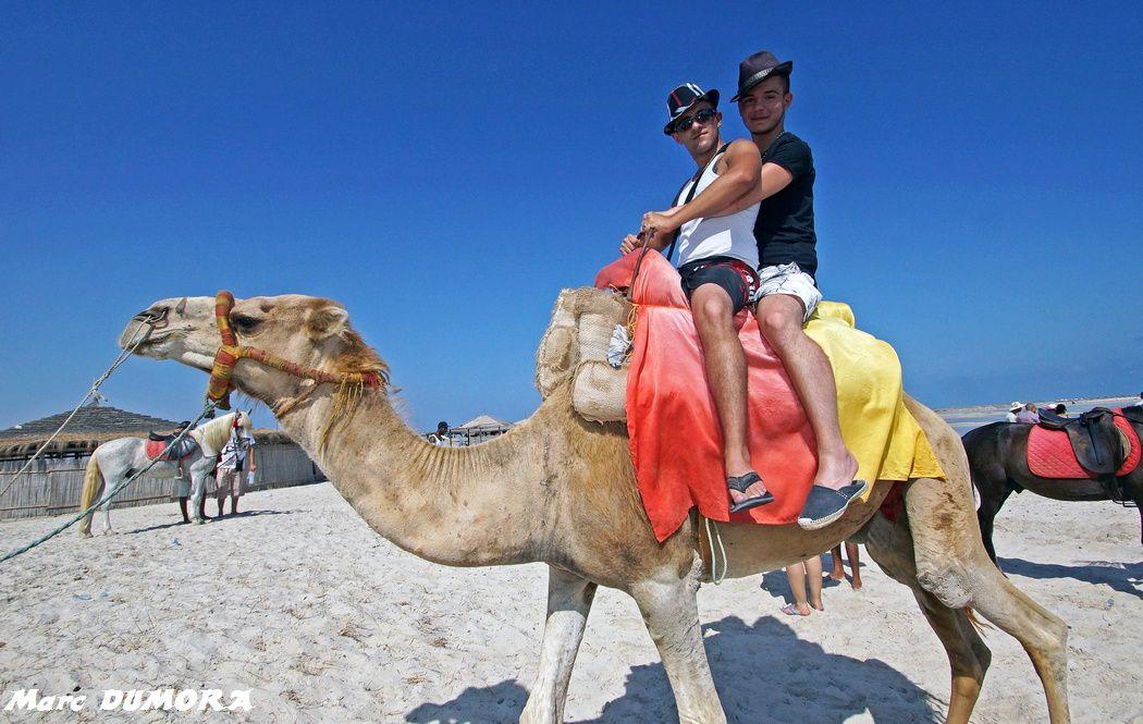 Djerba Vacances