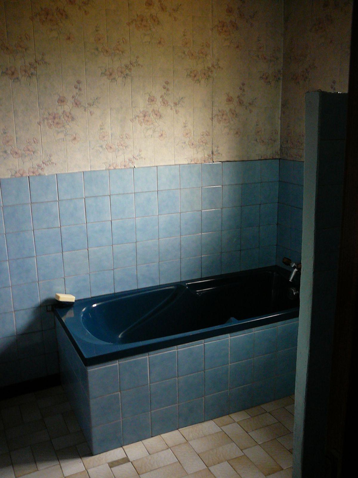 Le Hall d'entrée, le salon, la chambre à l'Est, la chambre du fond, le couloir bizarre qui menait à la salle de bain, et aux toilettes...
